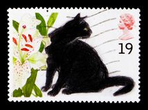Sophie Felis silvestris catus, Cats serie, circa 1995. MOSCOW, RUSSIA - OCTOBER 3, 2017: A stamp printed in Great Britain shows Sophie Felis silvestris catus Royalty Free Stock Images