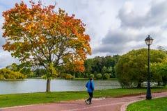 Elderly man running in autumn park royalty free stock image