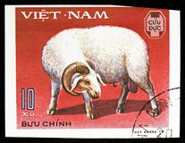 Ram Ovis ammon aries, Domestic horned animals serie, circa 1979. MOSCOW, RUSSIA - SEPTEMBER 26, 2018: A stamp printed in Vietnam shows Ram Ovis ammon aries royalty free stock photography