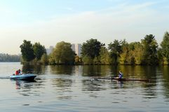 Training of oarsmen on the Moscow River in the Serebryany Bor. MOSCOW, RUSSIA - SEPTEMBER 24, 2015: Training of oarsmen on the Moscow River in the Serebryany Stock Photos