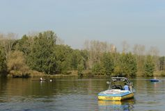 Training of oarsmen on the Moscow River in the Serebryany Bor. Moscow Stock Photos