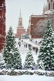 Kremlin Towers Framed by Christmas Trees in Snow. MOSCOW, RUSSIA - View through snow-covered Christmas trees at Manezhnaya square on people walking under heavy royalty free stock photography
