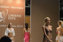Moscow Traffic Lingrie Expo Womens in colored lingrie Stock Photo