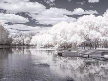 moscow Włoski staw Infrared fotografia Obraz Royalty Free