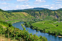 Mosel river Germany. View on the Mosel river in Germany royalty free stock photos