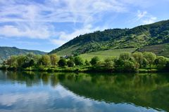 Mosel River in Germany Royalty Free Stock Images