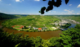 Mosel River near Zell Royalty Free Stock Photos