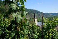 Mosel River Royalty Free Stock Photo