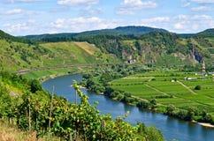 Mosel rzeka Niemcy zdjęcia royalty free