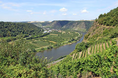 Mosel Valley Stock Photo