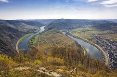 The Mosel valley near Bremm Stock Image
