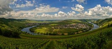 Moselle ögla Arkivfoto