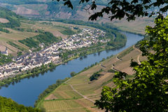 Moselle Royalty Free Stock Photo