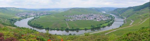 Moselle. Loop between Trittenheim und Leiwen in Germany Royalty Free Stock Photo