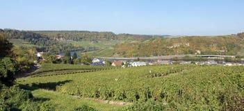 Moselle dal, Machtum, Luxembourg Royaltyfri Fotografi