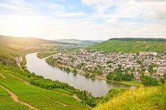 Moselle dalTyskland: Sikt från den Landshut slotten till den gamla staden Bernkastel-Kues med vingårdar och floden Mosel i sommar Arkivfoton