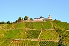 Moselle dalTyskland: Sikt till den Marienburg slotten nära byn Puenderich Arkivfoto