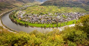 Moselle landscape and the wine village Ernst  Rheinland Pfalz Ge. Moselle loop landscape and the wine village Ernst  Rheinland Pfalz Germany Stock Photography