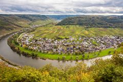 Moselle landscape and the wine village Ernst  Rheinland Pfalz Ge. Moselle loop landscape and the wine village Ernst  Rheinland Pfalz Germany Royalty Free Stock Images