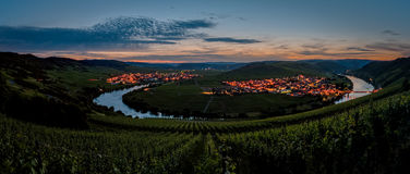 Moselle Loop. Panorama with the Moselle Loop between Leiwen and Trittenheim in Germany Royalty Free Stock Image