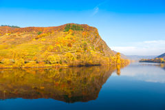 Moselle (Mosel), Germany Royalty Free Stock Image