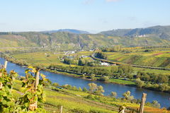Moselle PÃ ¼ dolinny pobliski nderich Obraz Royalty Free