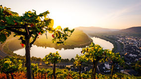 Moselle river bend Royalty Free Stock Photos