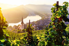 Moselle river bend Stock Image