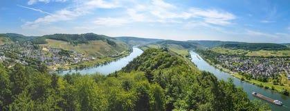 Moselle River Valley nära Punderich, Tyskland Arkivfoto