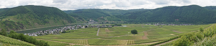 Moselle valley, Germany Stock Photos