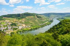 Moselle Valley Germany: View to river Moselle near village Puenderich and Marienburg Castle - Mosel wine region, Germany stock image