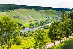 Moselle valley and Mosel river Stock Image