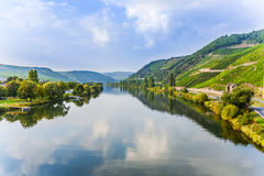 Moselle valley at Trittenheim. Scenic moselle valley at Trittenheim Stock Image