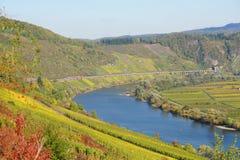Moselle w pobliski Pünderich Zdjęcie Royalty Free