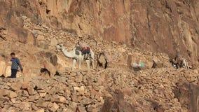 Moses Mountain. Sinai. Egypte stock videobeelden