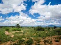 Moshi, Tanzania Stock Images