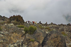 MOSHI,TZ - CIRCA  AUGUST 2010 - Porters along the Machame Route Royalty Free Stock Photo