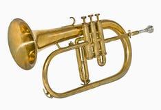 Mosiężny isntrument Obrazy Stock