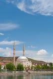 moské Arkivfoto