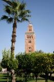 moské för 3 marrakesh Royaltyfri Fotografi