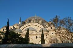 Moské för SÃ-¼leymaniye med träd i Istanbul, Turkiet Arkivbild