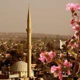 Moské i Adana, Turkiet arkivbilder