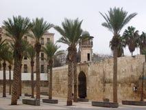 Moské i Aleppo Arkivfoton