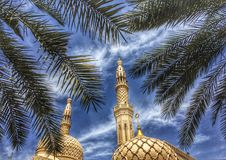 Moské med palmträdet Arkivfoton