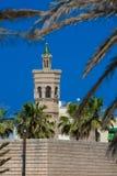moské tunis royaltyfria bilder