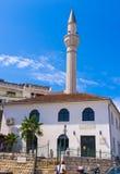 Moskén Royaltyfri Foto