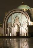 moskénatt royaltyfri bild