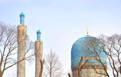mosképetersburg saint Royaltyfria Foton