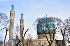 mosképetersburg saint Royaltyfri Fotografi