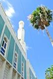 MoskéReunion Island minaret Royaltyfri Foto
